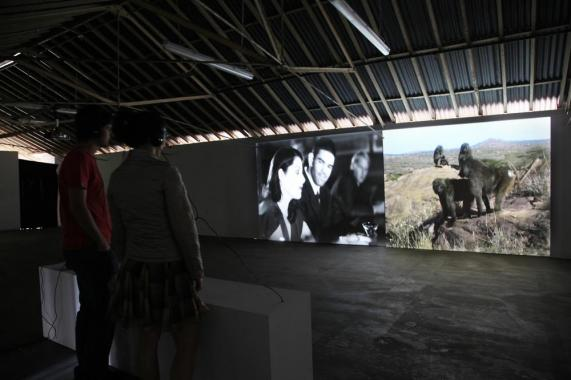Participants watching a large split screen projection of Mayeri's film. The film shows humans on a date alongside baboons mating.