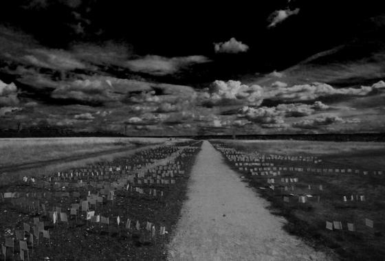 A grey landscape, a long road runs through the middle, stretching in to the distance. Along the roadside are many small flags.