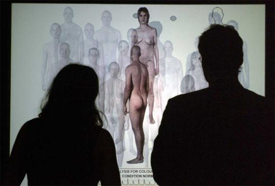 People watching a screen showing a nude male and female.