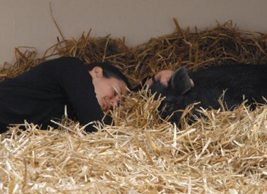 Kira O'Reilly, Interspecies, Falling Asleep with a Pig, Cornerhouse 2009