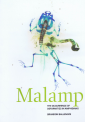 Brandon Balengée, Malamp: The Occurrence of Deformities in Amphibians